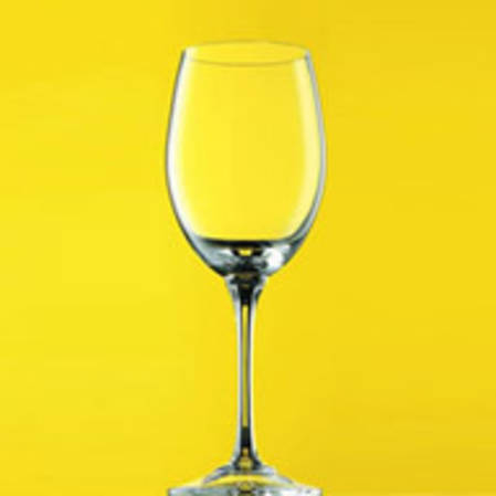 DiVino White Wine Glass Set of 6