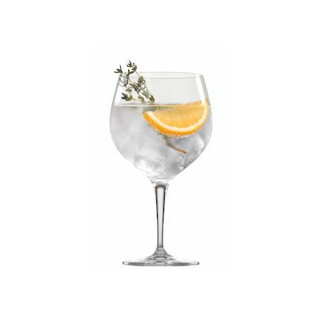BBQ Drinks Gin and Tonic Glass - Set 6