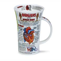 Dunoon Organs of the Human Body Mug